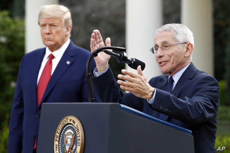 Dr. Anthony Fauci, director of the National Institute of Allergy and Infectious Diseases, speaks during a coronavirus task force briefing in the Rose Garden of the White House, Sunday, March 29, 2020, in Washington, as President Donald Trump listens.