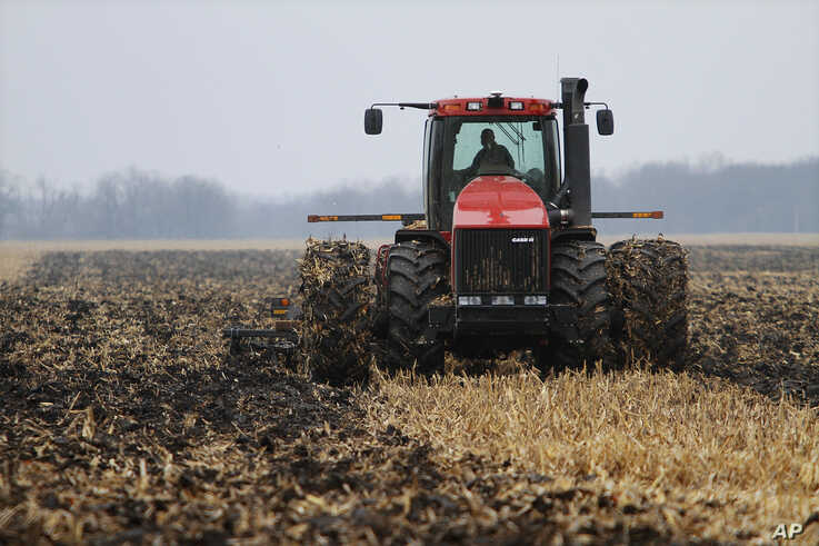 FILE - A farmer cultivates his field near Farmingdale, Ill., Dec. 4, 2009, turning what remains of the plants back into the soil. A new study suggests no-till farming, in which fields are left alone between harvest and planting, releases less greenhouse gas.