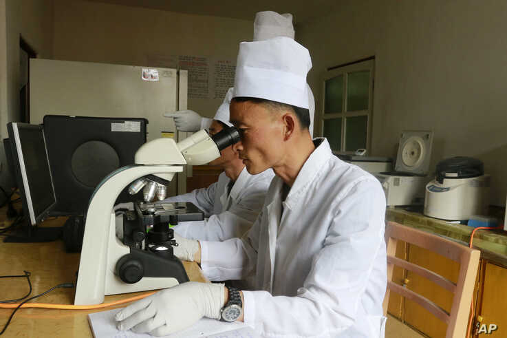 FILE - In this June 10, 2019, file photo, researchers of the Veterinary Institute under the Academy of Agricultural Research…