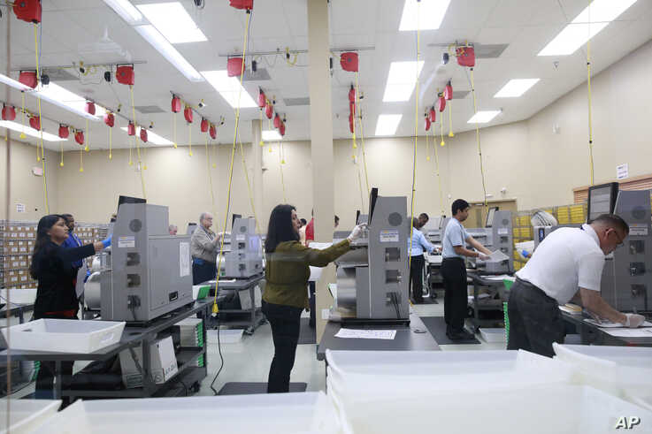 Workers counts ballots at the Broward County Supervisor Of Elections Office during the Florida Primary elections at the Broward…