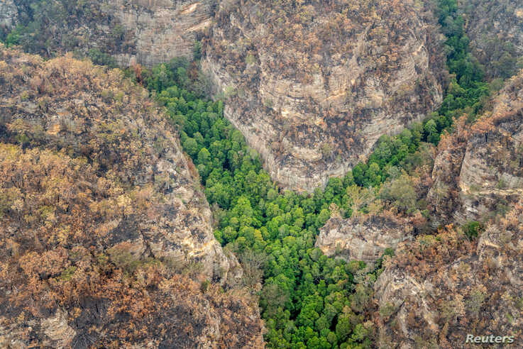 An aerial view of Wollemi National Park where endangered Wollemi Pines are being protected from bushfires by a specialist team…