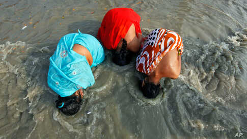 Female Hindu pilgrims take a dip at the confluence of the Ganges river and the Bay of Bengal at Sagar Island, India January 13, 2012. (Reuters)